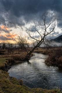 Trout_Brook_into_post_pond_mist_ESC1042
