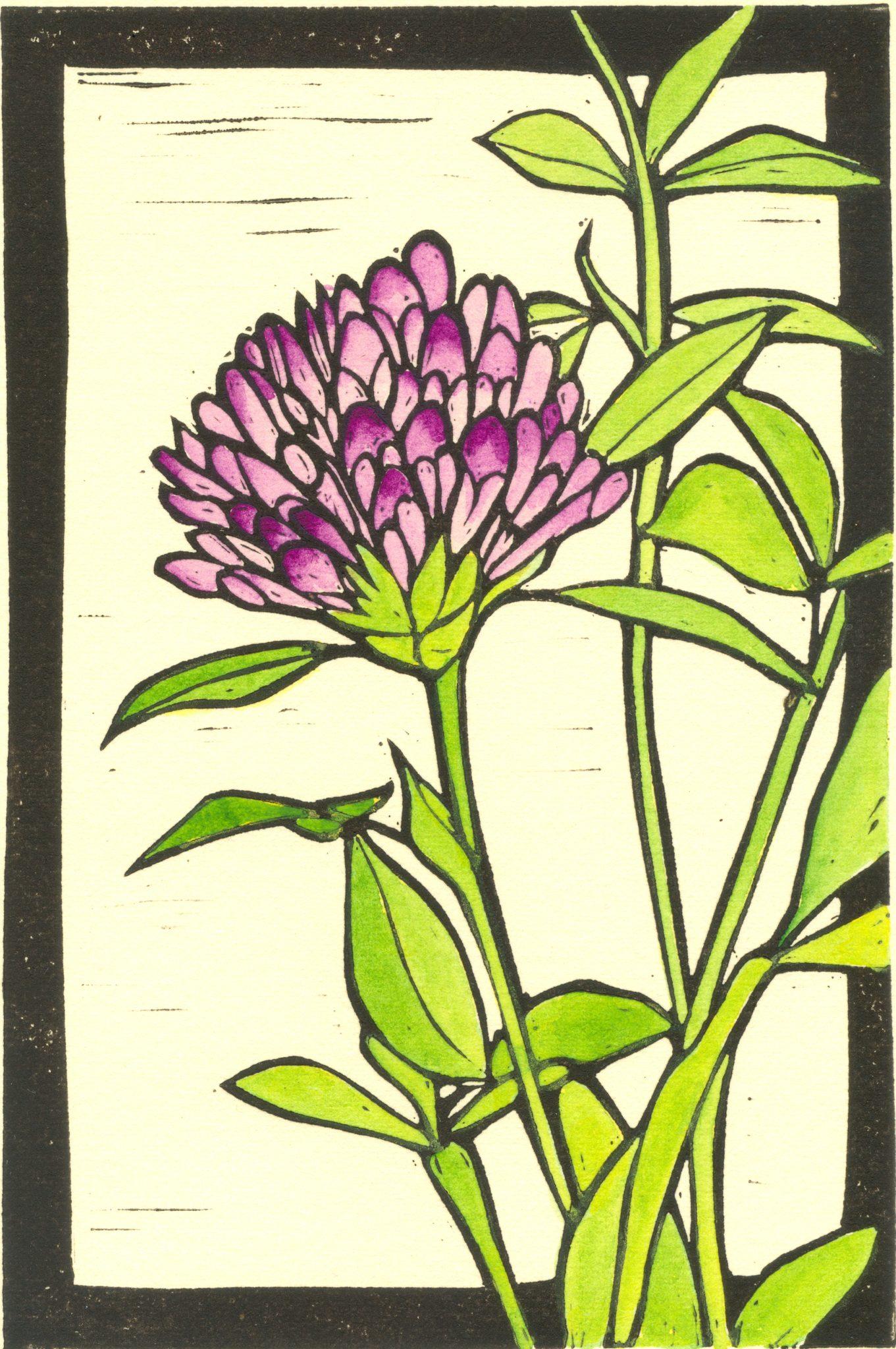 Vermont clover